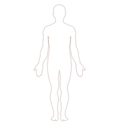 Man body outline vector image vector image