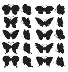 Black butterfly silhouettes vector