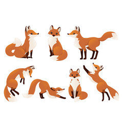 Cute cartoon fox set funny red fox collection vector
