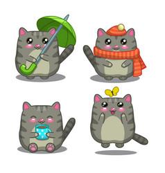 Gray cat vector image