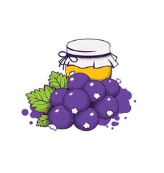 honey and berries vector image