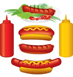 hot dodg various vector image