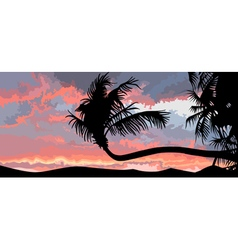 Silhouette of palm trees at sunset vector