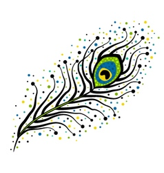 black peacock feather with dots vector image