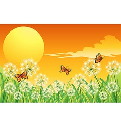 A sunset scenery with three orange butterflies vector image vector image