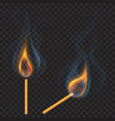 burning matches vector image vector image