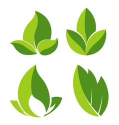 grean leaves as logotypes for eco companies set vector image vector image