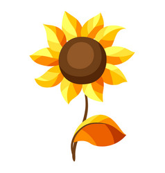 autumn sunflower vector image