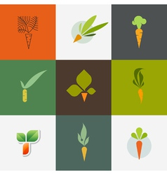 Carrot Set of decorative design elements vector image vector image