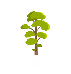 elm tree icon flat style vector image