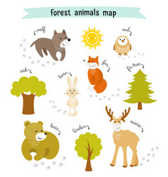 Forest animals map with trees and footprints vector
