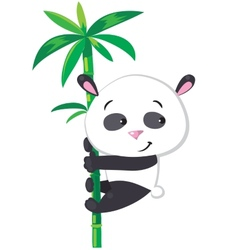 Little panda on bamboo vector