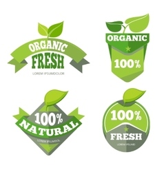 Natural green organic eco labels set vector image