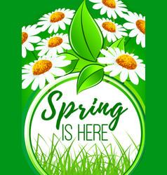 Spring is here flower frame border design vector