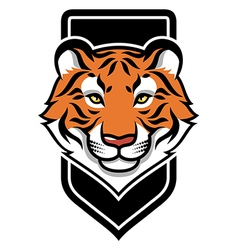 tiger calm shield vector image