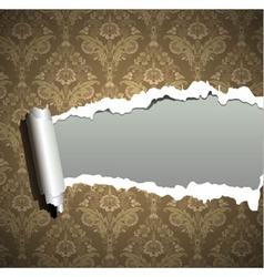 ornament wallpaper vector image