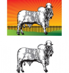 ox pasture vector image vector image