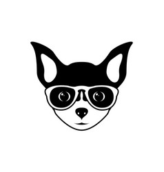 portrait of chihuahua dog in glasses vector image vector image