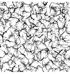 craquelure pattern grunge cracks cracked painted vector image