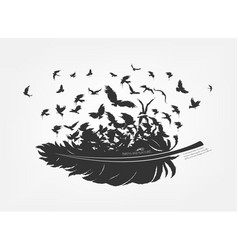Feathers with flying flock fly birds vector