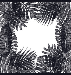 frame of tropical palm leaves hand drawing vector image