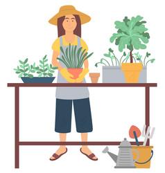 gardening hobby repotting plant green vector image