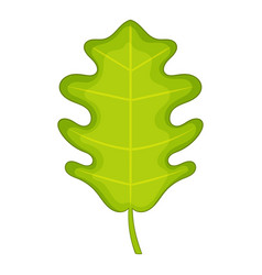 oak leaf icon cartoon style vector image