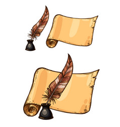 Old ink quill feather pen and manuscript vector
