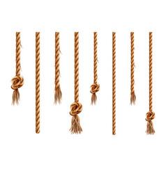 set isolated hanging ropes with tassels vector image