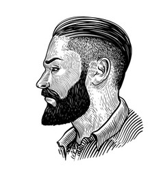 hand drawn portrait of bearded man in profile vector image
