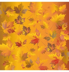 golden leafs vector image vector image
