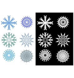 Beautiful and Unique Snowflakes vector image