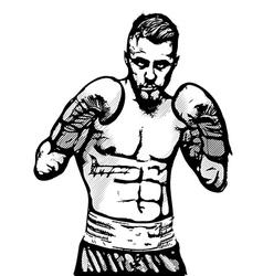 boxer portrait vector image