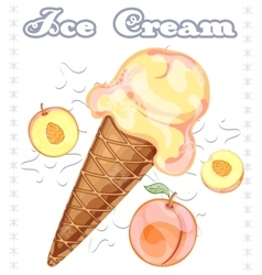 Peach ice cream vector image