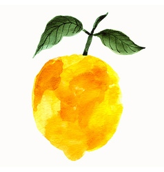 Watercolor lemon vector