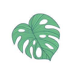 big cordate tropical leaf hand drawn vector image vector image