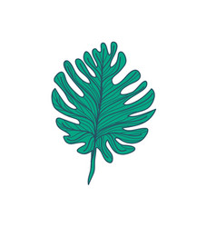 lobed tropical leaf hand drawn vector image vector image