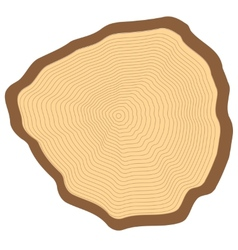 Cut of a tree vector image