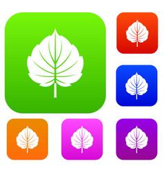 alder leaf set color collection vector image