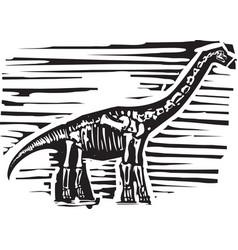 Apatosaurus fossil vector