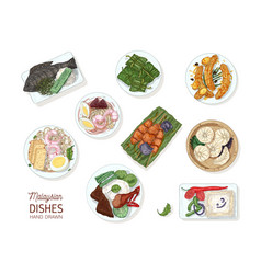 collection of tasty meals of malaysian cuisine vector image