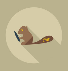 Flat modern design with shadow icons beaver vector