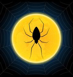Halloween spider hanging web moon background vector
