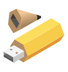 pen usb flash icon isometric style vector image