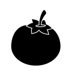 Tomato vegetable food fresh pictogram vector