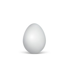 white egg on a white background healthy food vector image