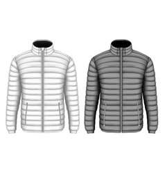 mens insulated down jacket vector image