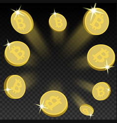crypto currency golden coin bitcoin on transparent vector image
