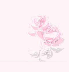 drawing of beautiful rose flower vector image