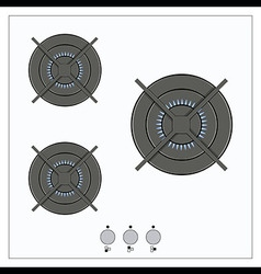 Gas burning from a kitchen gas stove vector image vector image